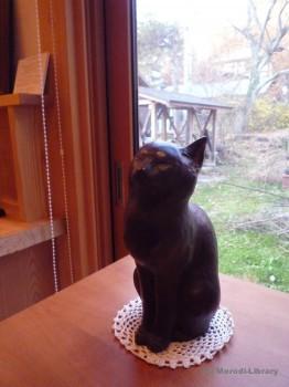 猫ランキング1位 すましブロンズ猫